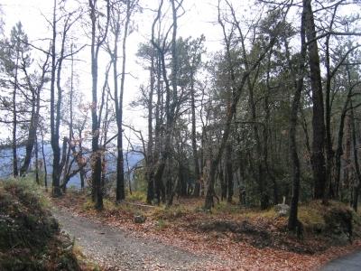 gite locations saisonniere 06